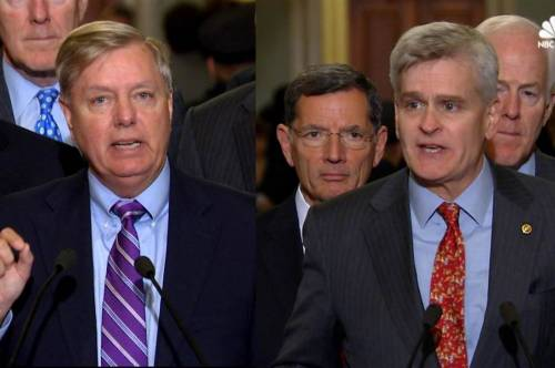 Lindsey Graham, Bill Cassidy
