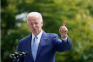Joe Biden, White House, approval rating, public opinion