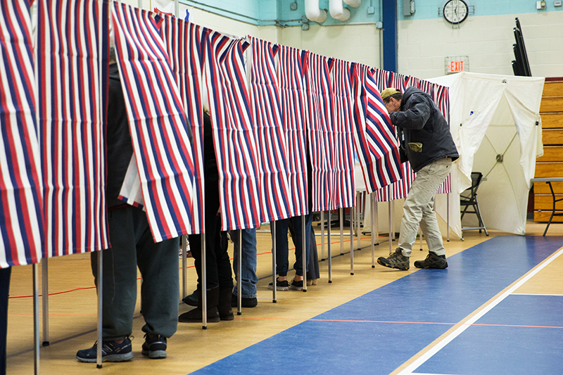 elections, Presidential elections, Democratic turnout, New Hampshire Primary